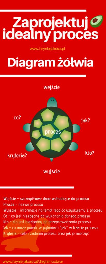 diagram żółwia infografika