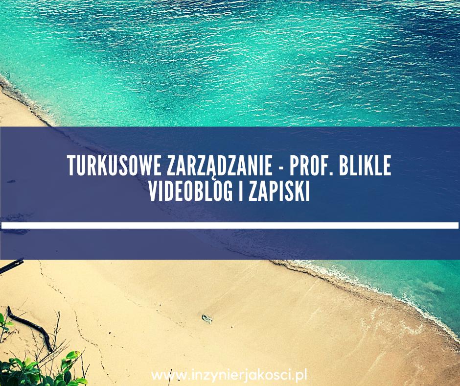 zarządzanie turkusowe